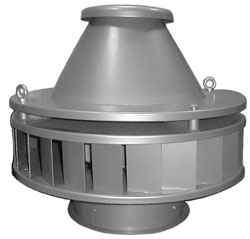 Roof and roof fans